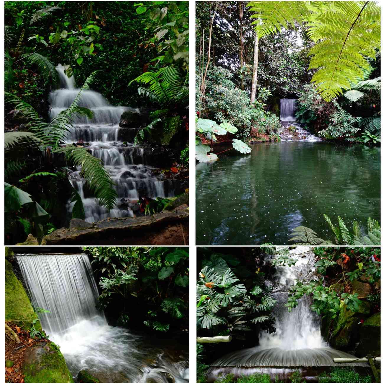 Bogota_jardinbotanico2