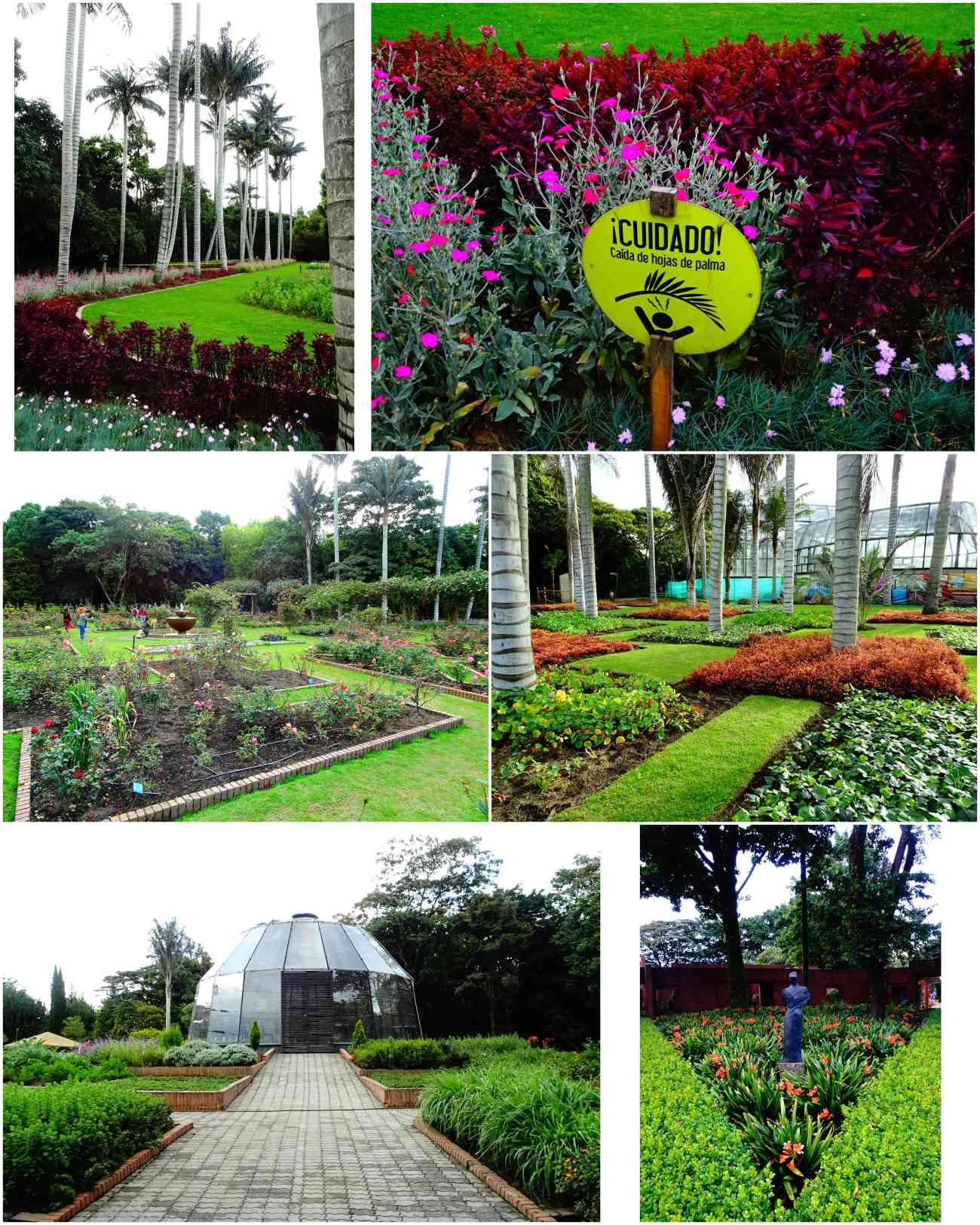 Bogota_jardinbotanico3