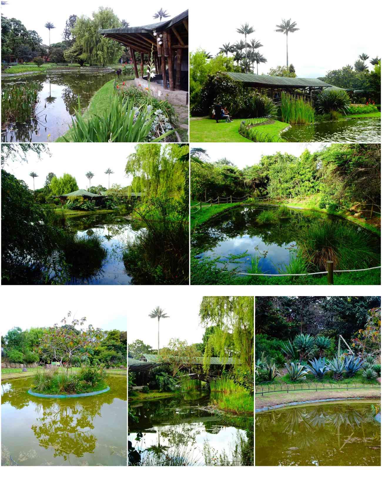 Bogota_jardinbotanico4